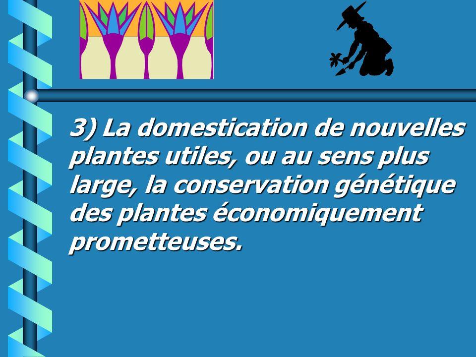 2) Sauvegarde des savoirs sur les végétaux et leurs propiétés, que possèdent des cultures en voie de disparition rapide.