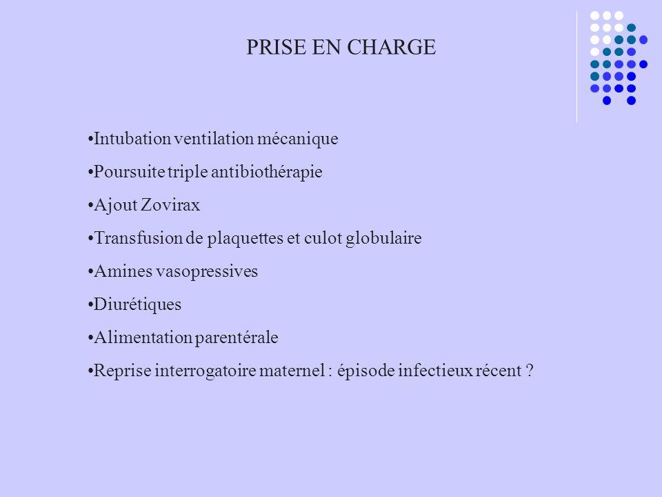 PRISE EN CHARGE Intubation ventilation mécanique Poursuite triple antibiothérapie Ajout Zovirax Transfusion de plaquettes et culot globulaire Amines v