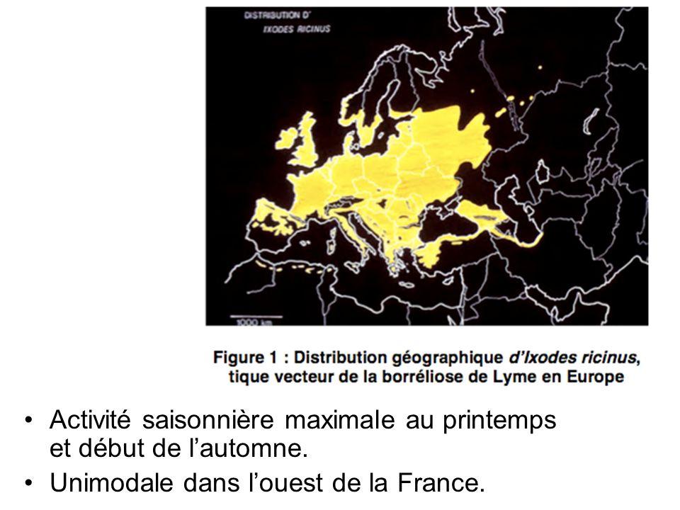 Activité saisonnière maximale au printemps et début de lautomne. Unimodale dans louest de la France.