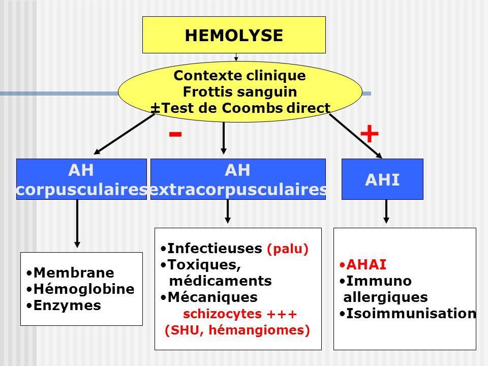 HEMOLYSE Contexte clinique Frottis sanguin ±Test de Coombs direct AHAI + - AH corpusculaires AH extracorpusculaires AH corpusculaires AH extracorpuscu