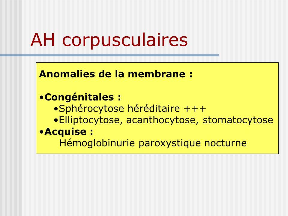 AH corpusculaires Anomalies de la membrane : Congénitales : Sphérocytose héréditaire +++ Elliptocytose, acanthocytose, stomatocytose Acquise : Hémoglo