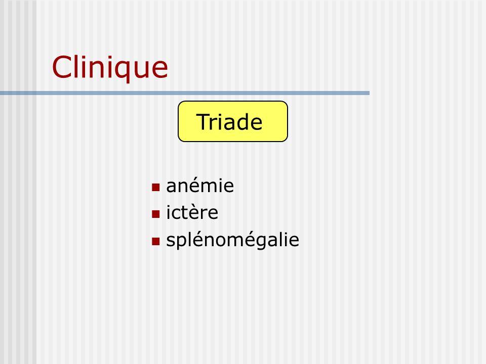 Clinique anémie ictère splénomégalie Triade