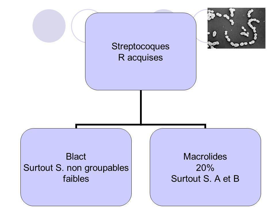Streptocoques R acquises Blact Surtout S. non groupables faibles Macrolides 20% Surtout S. A et B