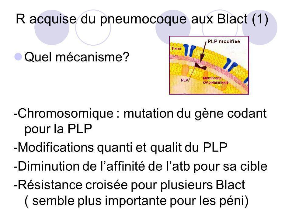 R acquise du pneumocoque aux Blact (1) Quel mécanisme? -Chromosomique : mutation du gène codant pour la PLP -Modifications quanti et qualit du PLP -Di