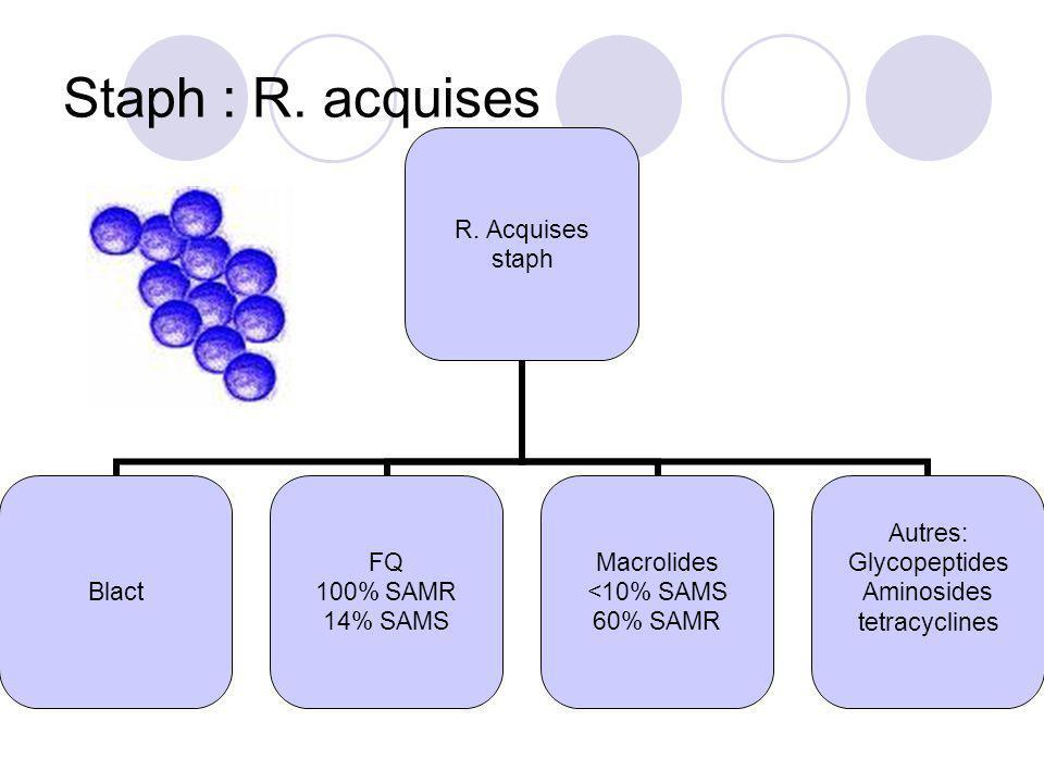 Staph : R. acquises R. Acquises staph Blact FQ 100% SAMR 14% SAMS Macrolides <10% SAMS 60% SAMR Autres: Glycopeptides Aminosides tetracyclines