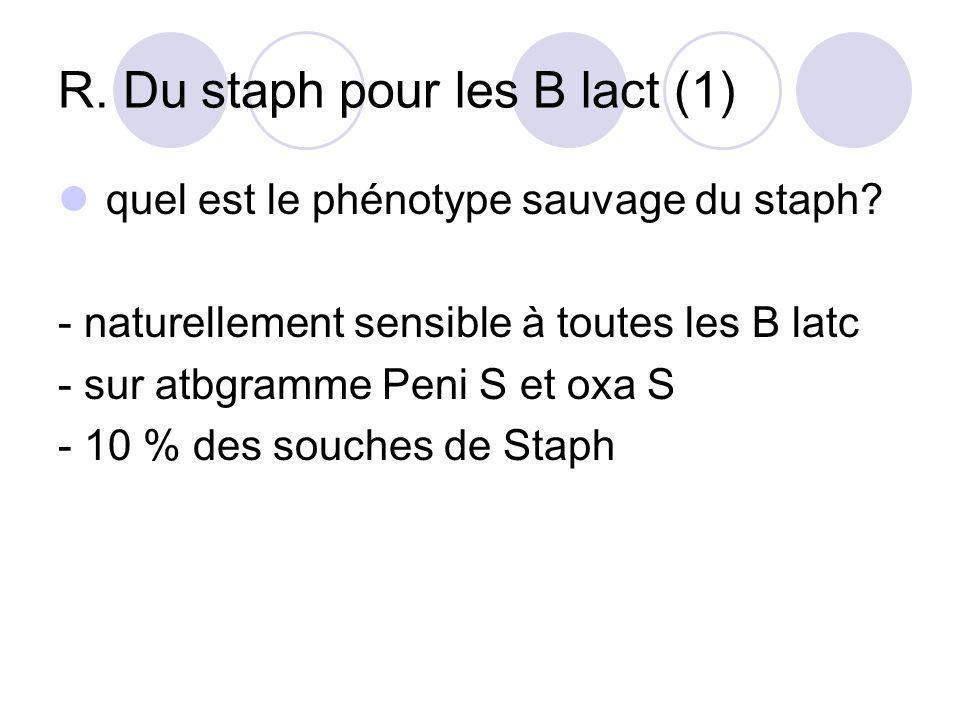 R. Du staph pour les B lact (1) quel est le phénotype sauvage du staph? - naturellement sensible à toutes les B latc - sur atbgramme Peni S et oxa S -