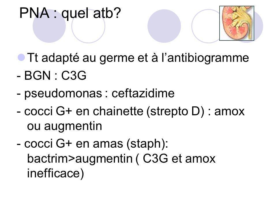 PNA : quel atb? Tt adapté au germe et à lantibiogramme - BGN : C3G - pseudomonas : ceftazidime - cocci G+ en chainette (strepto D) : amox ou augmentin