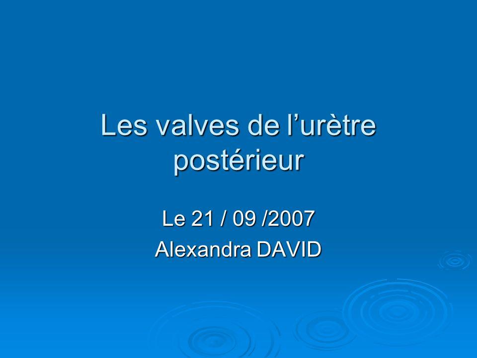 Les valves de lurètre postérieur Le 21 / 09 /2007 Alexandra DAVID