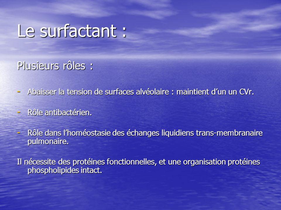 Le surfactant : Plusieurs rôles : - Abaisser la tension de surfaces alvéolaire : maintient dun un CVr. - Rôle antibactérien. - Rôle dans lhoméostasie