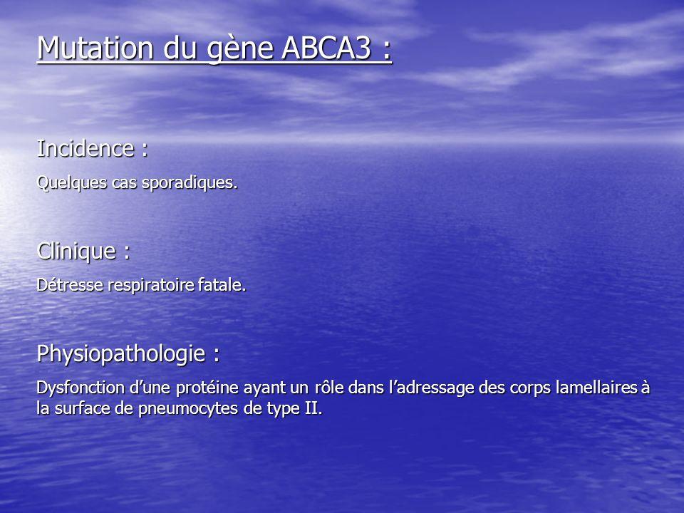 Mutation du gène ABCA3 : Incidence : Quelques cas sporadiques. Clinique : Détresse respiratoire fatale. Physiopathologie : Dysfonction dune protéine a