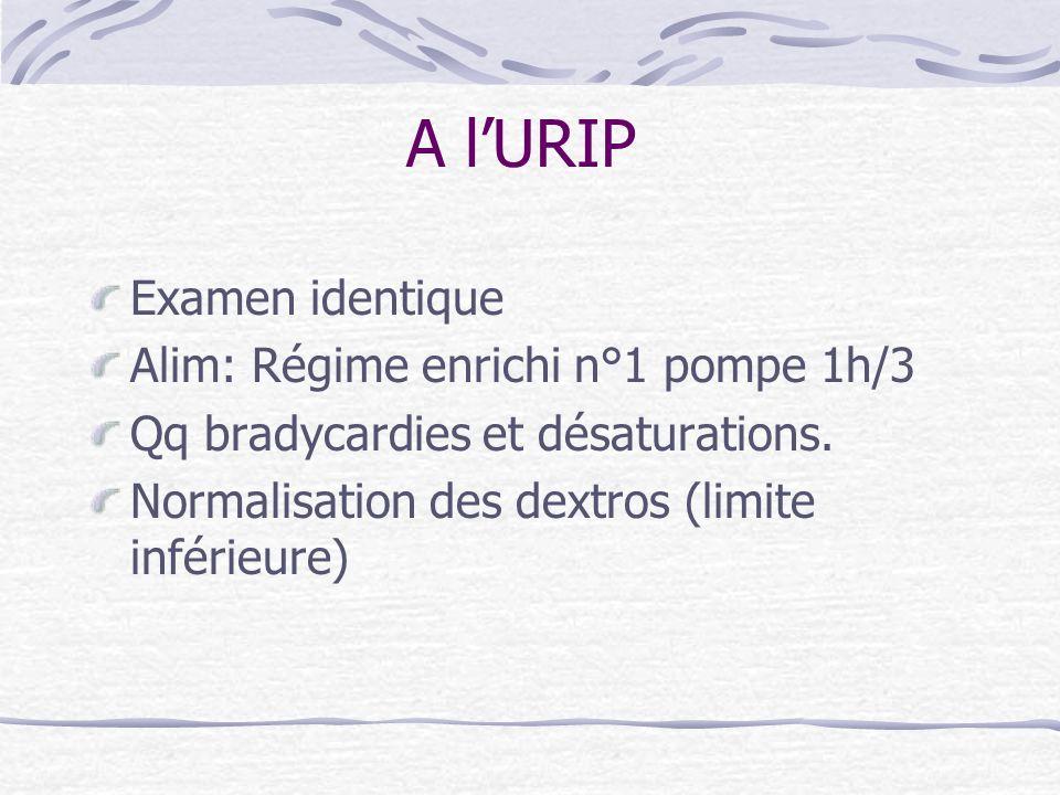 A lURIP Examen identique Alim: Régime enrichi n°1 pompe 1h/3 Qq bradycardies et désaturations. Normalisation des dextros (limite inférieure)