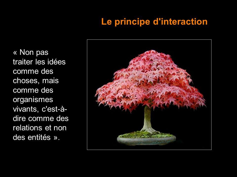 18 « Non pas traiter les idées comme des choses, mais comme des organismes vivants, c'est-à- dire comme des relations et non des entités ». Le princip