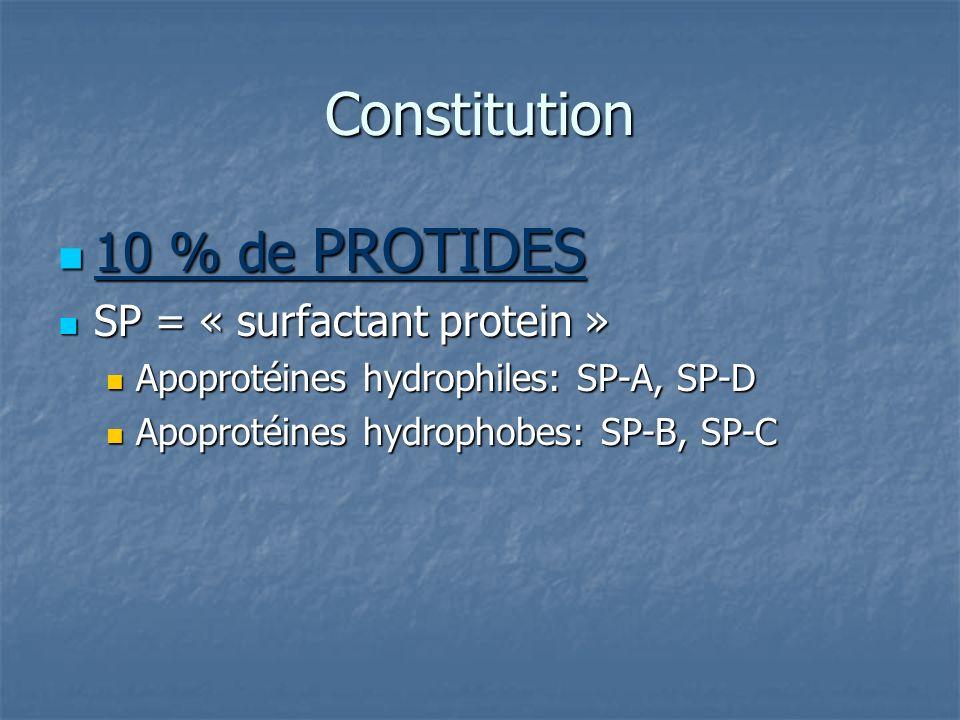 Constitution 10 % de PROTIDES 10 % de PROTIDES SP = « surfactant protein » SP = « surfactant protein » Apoprotéines hydrophiles: SP-A, SP-D Apoprotéin