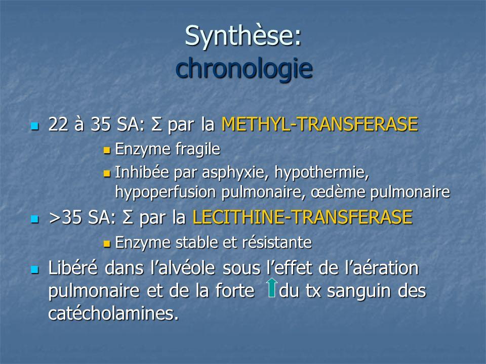 Synthèse: chronologie 22 à 35 SA: Σ par la METHYL-TRANSFERASE 22 à 35 SA: Σ par la METHYL-TRANSFERASE Enzyme fragile Enzyme fragile Inhibée par asphyx