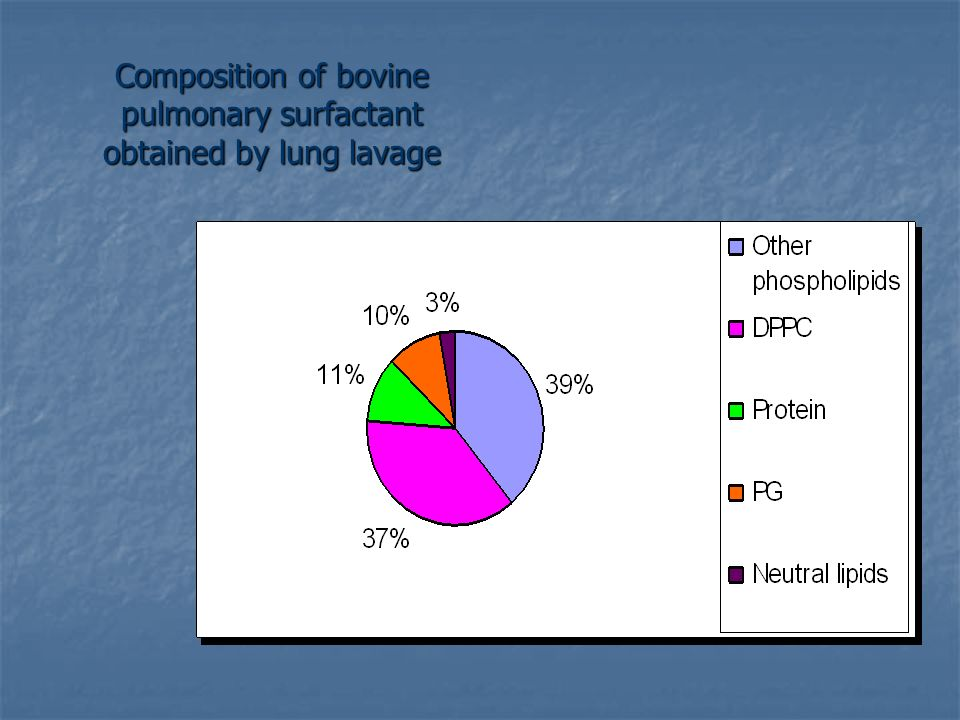 Composition of bovine pulmonary surfactant obtained by lung lavage