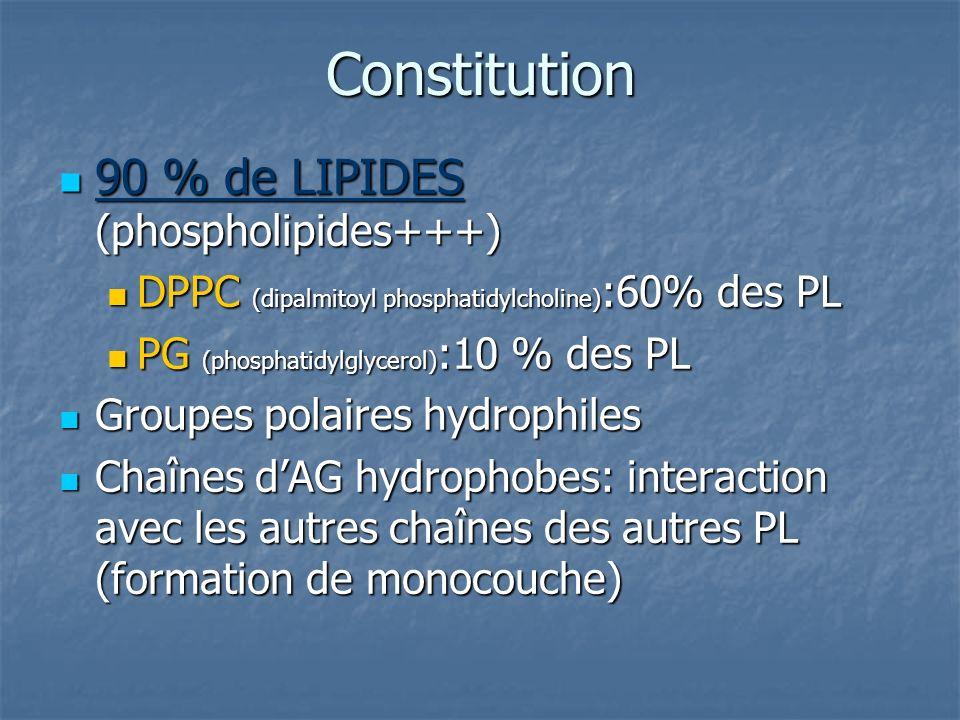 Constitution 90 % de LIPIDES (phospholipides+++) 90 % de LIPIDES (phospholipides+++) DPPC (dipalmitoyl phosphatidylcholine) :60% des PL DPPC (dipalmit