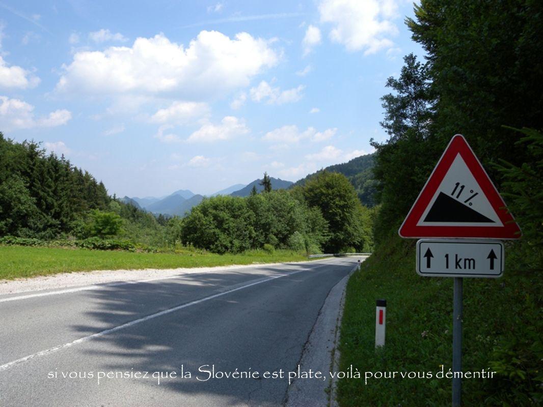 si vous pensiez que la Slovénie est plate, voilà pour vous démentir