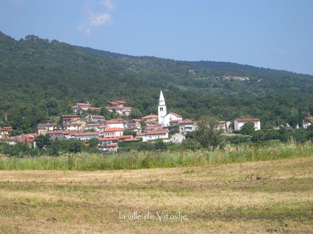 la ville de Vitovlje