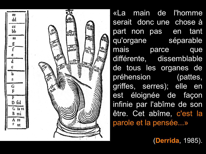 «La main de l'homme serait donc une chose à part non pas en tant qu'organe séparable mais parce que différente, dissemblable de tous les organes de pr