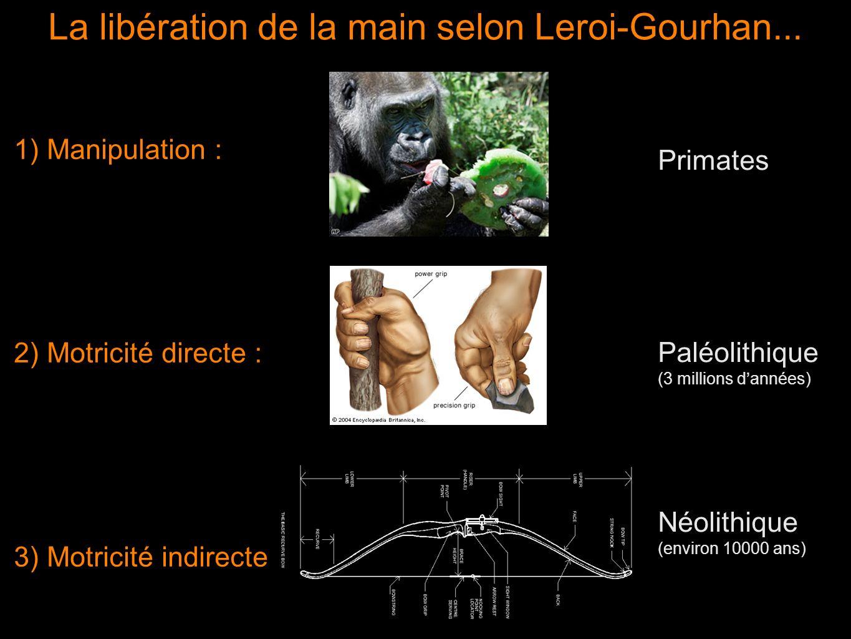1) Manipulation : 2) Motricité directe : 3) Motricité indirecte La libération de la main selon Leroi-Gourhan... Primates Paléolithique (3 millions dan