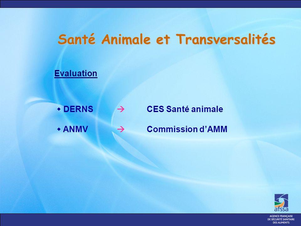 Santé Animale et Transversalités DERNS CES Santé animale ANMV Commission dAMM Evaluation
