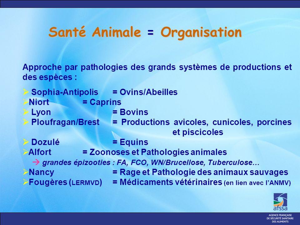 Santé Animale = Organisation Approche par pathologies des grands systèmes de productions et des espèces : Sophia-Antipolis = Ovins/Abeilles Niort = Ca
