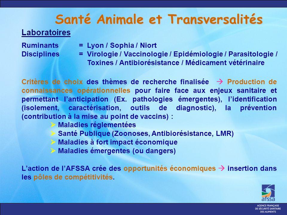 Santé Animale et Transversalités Ruminants= Lyon / Sophia / Niort Disciplines = Virologie / Vaccinologie / Epidémiologie / Parasitologie / Toxines / A