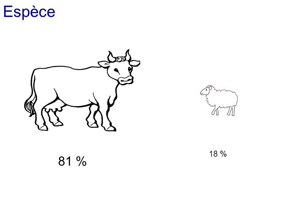 Espèce 81 % 18 %