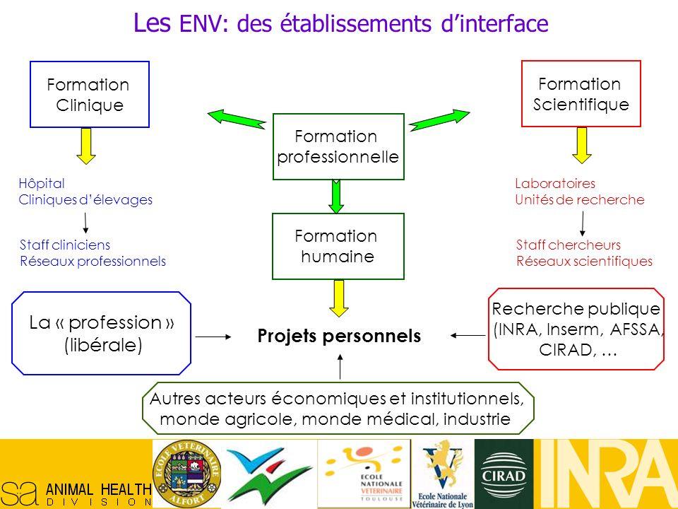 Réseau Français en Santé Animale, 29/10/07, 5 Les ENV: des établissements dinterface Formation Clinique Formation professionnelle Formation Scientifiq