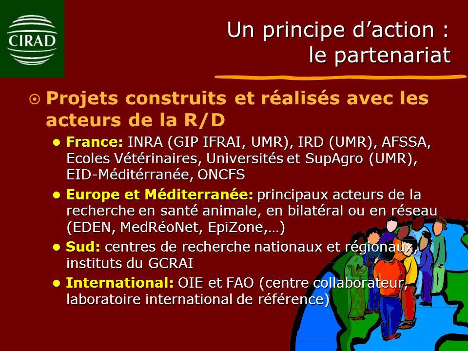 Un principe daction : le partenariat Projets construits et réalisés avec les acteurs de la R/D France: INRA (GIP IFRAI, UMR), IRD (UMR), AFSSA, Ecoles