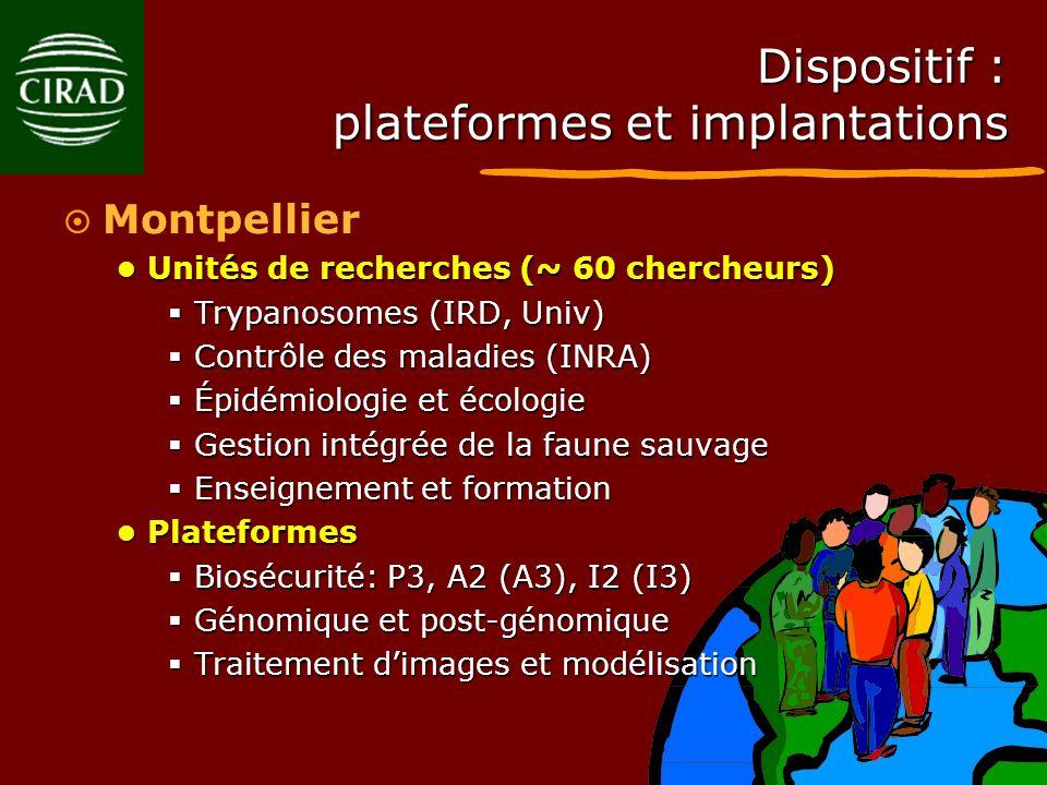 Dispositif : plateformes et implantations Montpellier Unités de recherches (~ 60 chercheurs) Unités de recherches (~ 60 chercheurs) Trypanosomes (IRD,