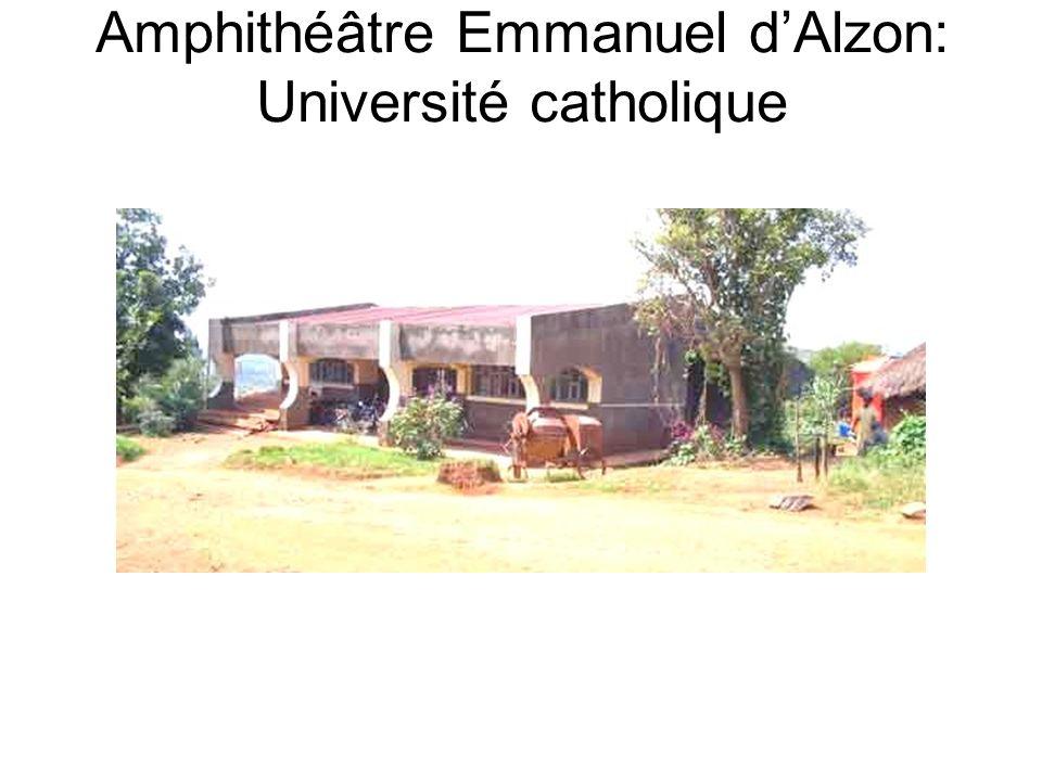 Amphithéâtre Emmanuel dAlzon: Université catholique