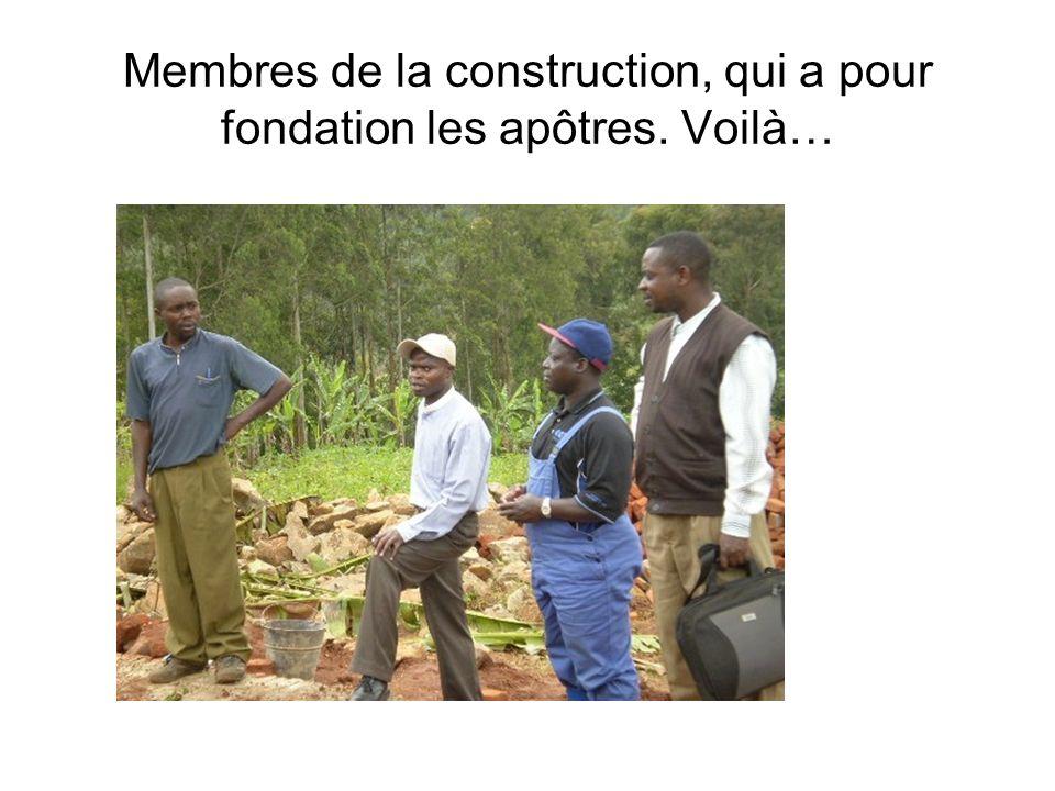 Membres de la construction, qui a pour fondation les apôtres. Voilà…