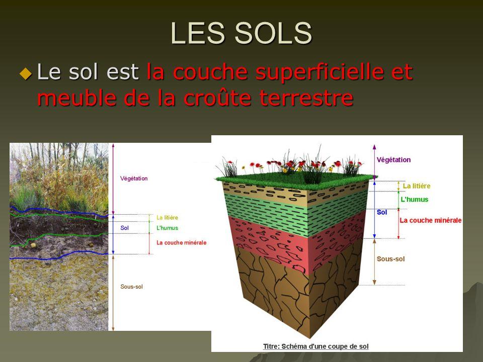 LES SOLS Le sol est la couche superficielle et meuble de la croûte terrestre Le sol est la couche superficielle et meuble de la croûte terrestre