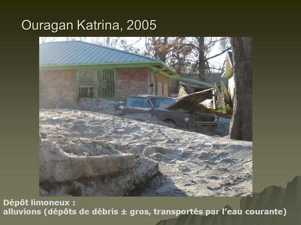 Ouragan Katrina, 2005 Dépôt limoneux : alluvions (dépôts de débris ± gros, transportés par leau courante)