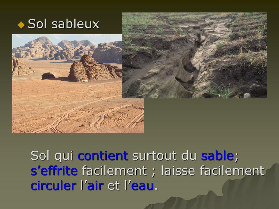 Sol sableux Sol sableux Sol qui contient surtout du sable; seffrite facilement ; laisse facilement circuler lair et leau.