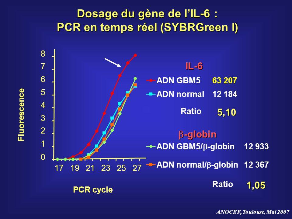 ANOCEF, Toulouse, Mai 2007 Dosage du gène de lIL-6 : PCR en temps réel (SYBRGreen I) ADN GBM5 ADN normal ADN GBM5/ -globin ADN normal/ -globin5,10 63