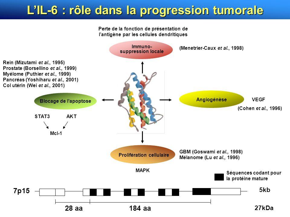 ANOCEF, Toulouse, Mai 2007 7p15 28 aa184 aa Séquences codant pour la protéine mature 5kb 27kDa LIL-6 : rôle dans la progression tumorale Prolifération