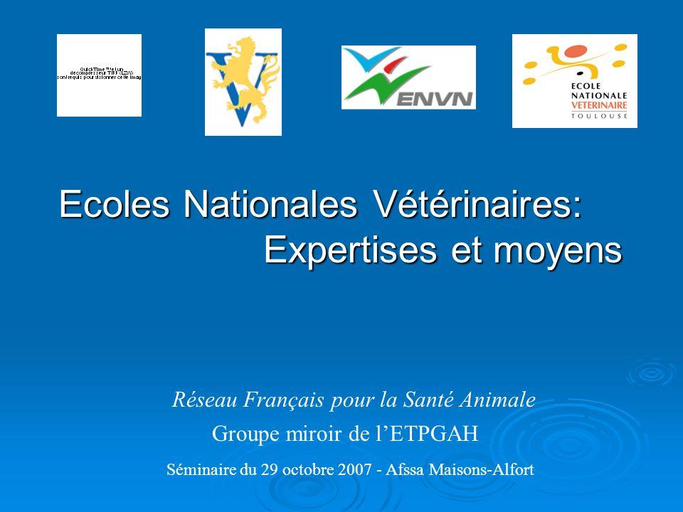 Réseau Français pour la Santé Animale Groupe miroir de lETPGAH Séminaire du 29 octobre 2007 - Afssa Maisons-Alfort Ecoles Nationales Vétérinaires: Exp