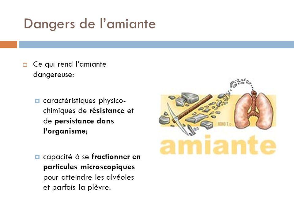 Dangers de lamiante Ce qui rend lamiante dangereuse: caractéristiques physico- chimiques de résistance et de persistance dans lorganisme; capacité à s