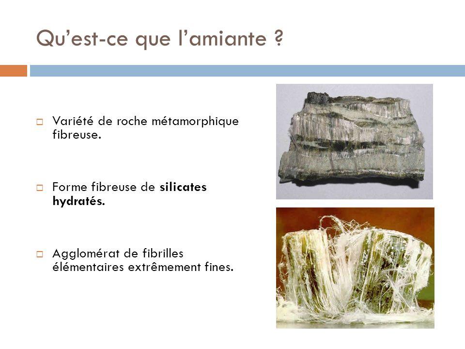 Quest-ce que lamiante ? Variété de roche métamorphique fibreuse. Forme fibreuse de silicates hydratés. Agglomérat de fibrilles élémentaires extrêmemen