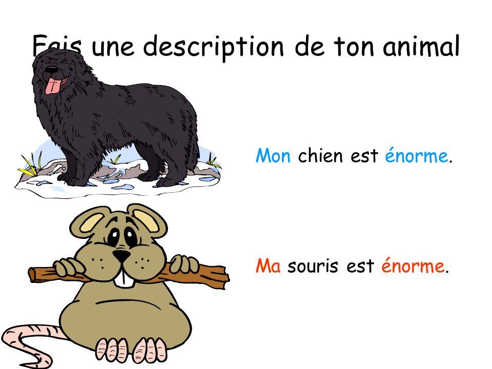 Fais une description de ton animal Mon chien est énorme. Ma souris est énorme.