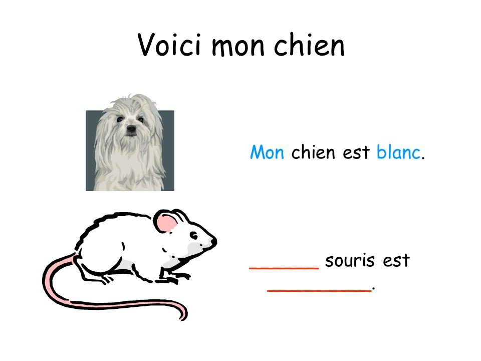 Voici mon chien Mon chien est blanc. ______ souris est _________.