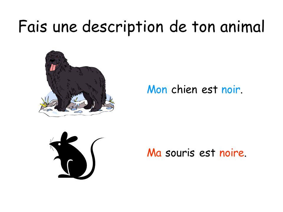 Fais une description de ton animal Mon chien est noir. Ma souris est noire.