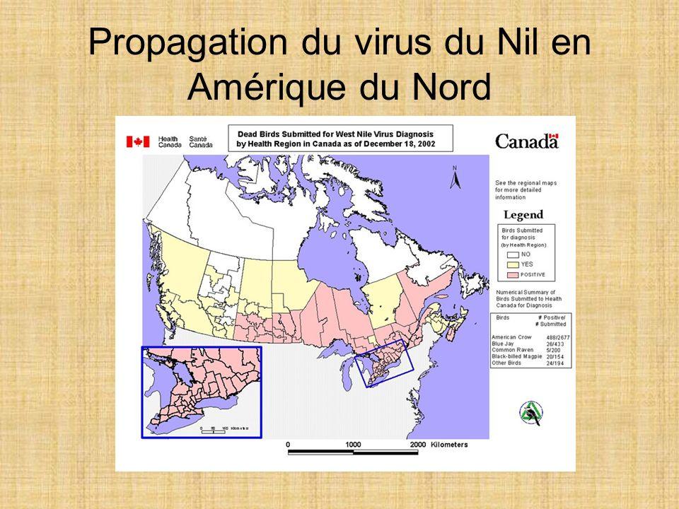 Propagation du virus du Nil en Amérique du Nord