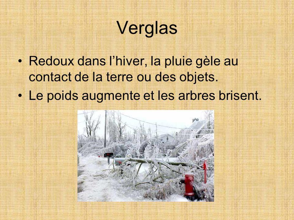 Verglas Redoux dans lhiver, la pluie gèle au contact de la terre ou des objets. Le poids augmente et les arbres brisent.