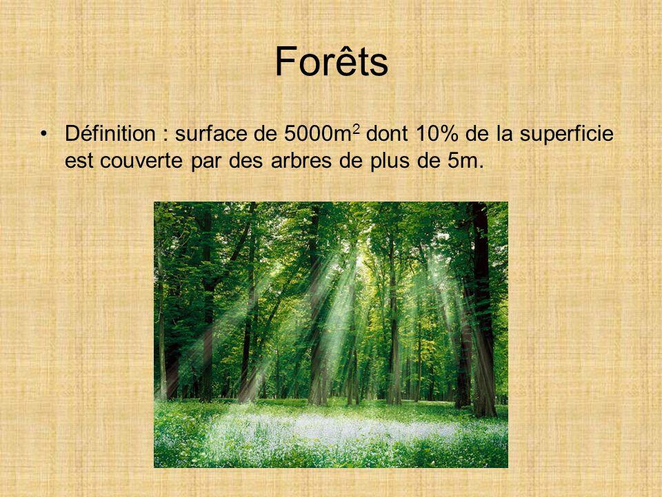 Forêts Définition : surface de 5000m 2 dont 10% de la superficie est couverte par des arbres de plus de 5m.