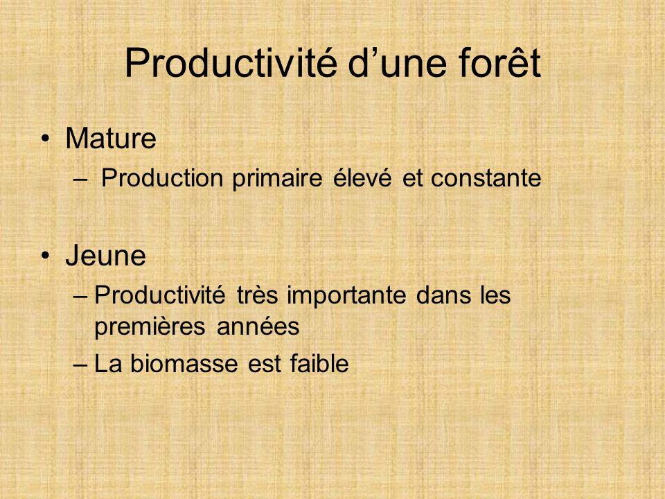 Productivité dune forêt Mature – Production primaire élevé et constante Jeune –Productivité très importante dans les premières années –La biomasse est