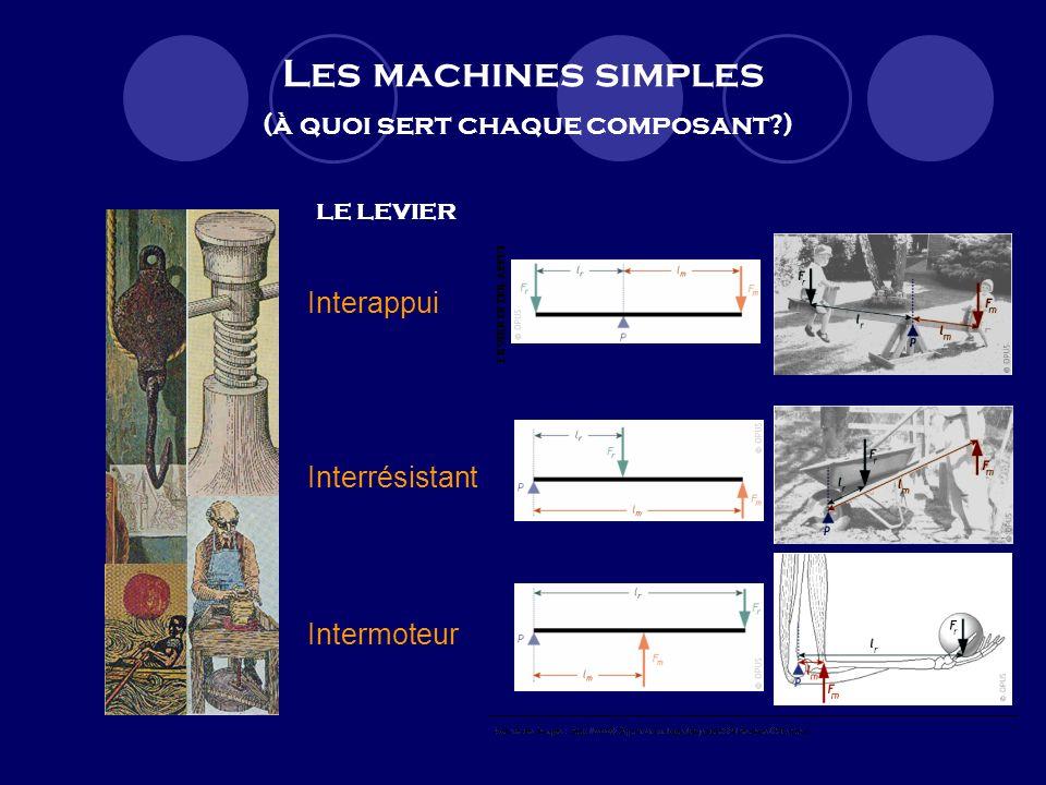Les machines simples (à quoi sert chaque composant?) LE LEVIER Interappui Interrésistant Intermoteur