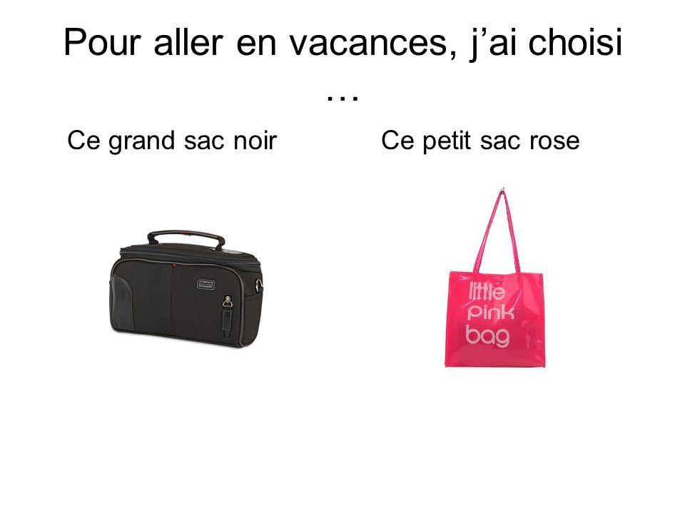 Pour aller en vacances, jai choisi … Ce grand sac noirCe petit sac rose